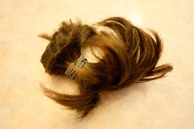 Fletcher's ponytail after cut 003
