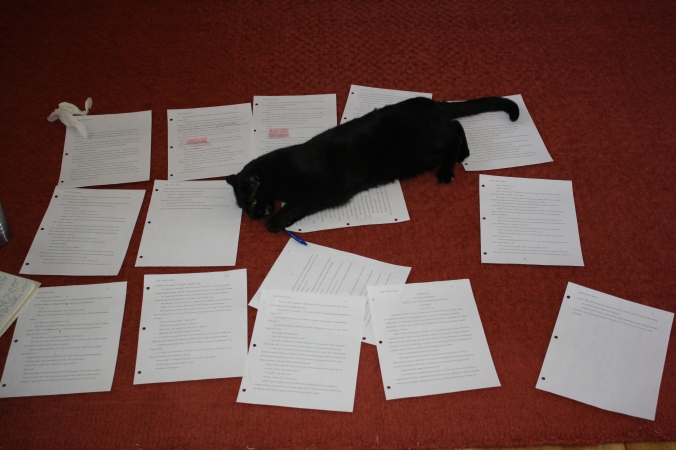 Cats and revision pages 005