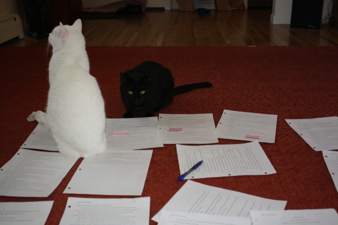 Cats and revision pages 011