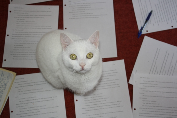 Cats and revision pages 013