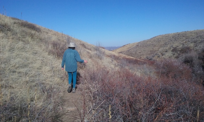 Me meandering ahead of Zippy. We'd just scared up a Red-tailed Hawk, some magpies, and a flicker.