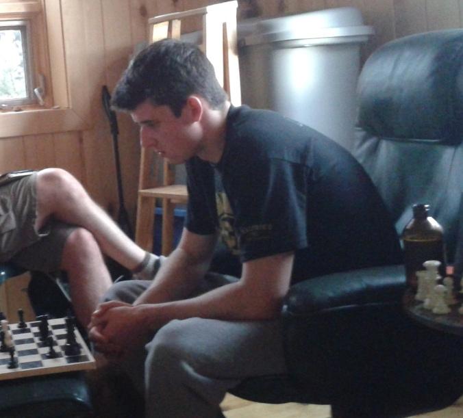 zebu-playing-chess