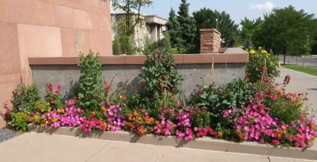 Visiting Denver Botanic Gardens Tracy Abell